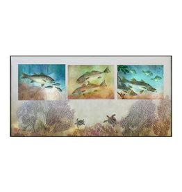 Ken Dara TRIPLEX FISH PRINT (Gyotaku, Horizontal, Asstd., 20x10 Frame)