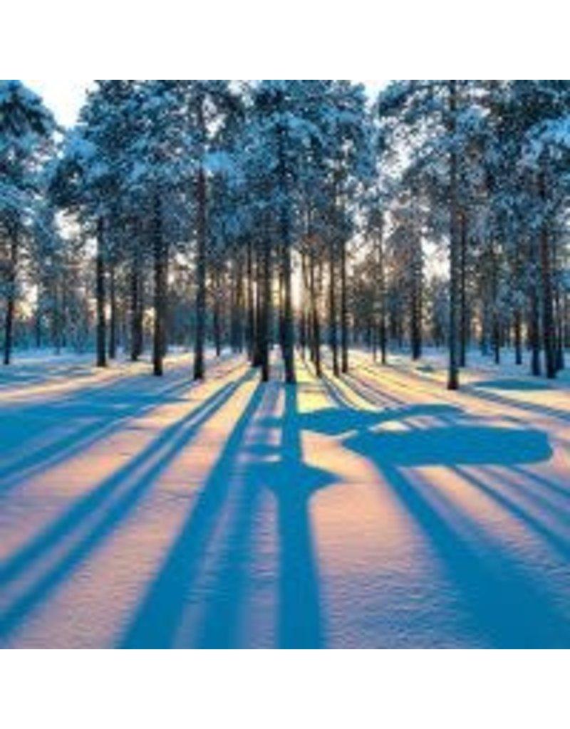 Zen Art & Design Sunrise in a Winter Forest (Teaser, 50 Pieces, Artisanal Wooden Jigsaw Puzzle)