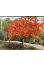 Carolyn Sadowski Royal Poinciana (Original Oil, Framed, Signed, 18x24)