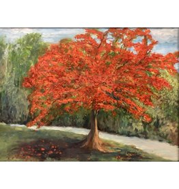 Carolyn Sadowski Royal Poinciana (Original Oil, Framed, Signed, 18x24, CARS)