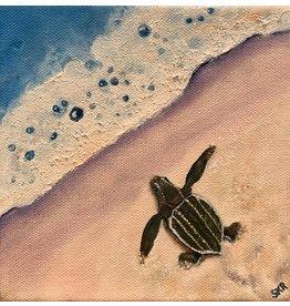 Susan Roberts Leatherback Mornings (Original Oil, Gallery Wrap, 6x6, SUSR)