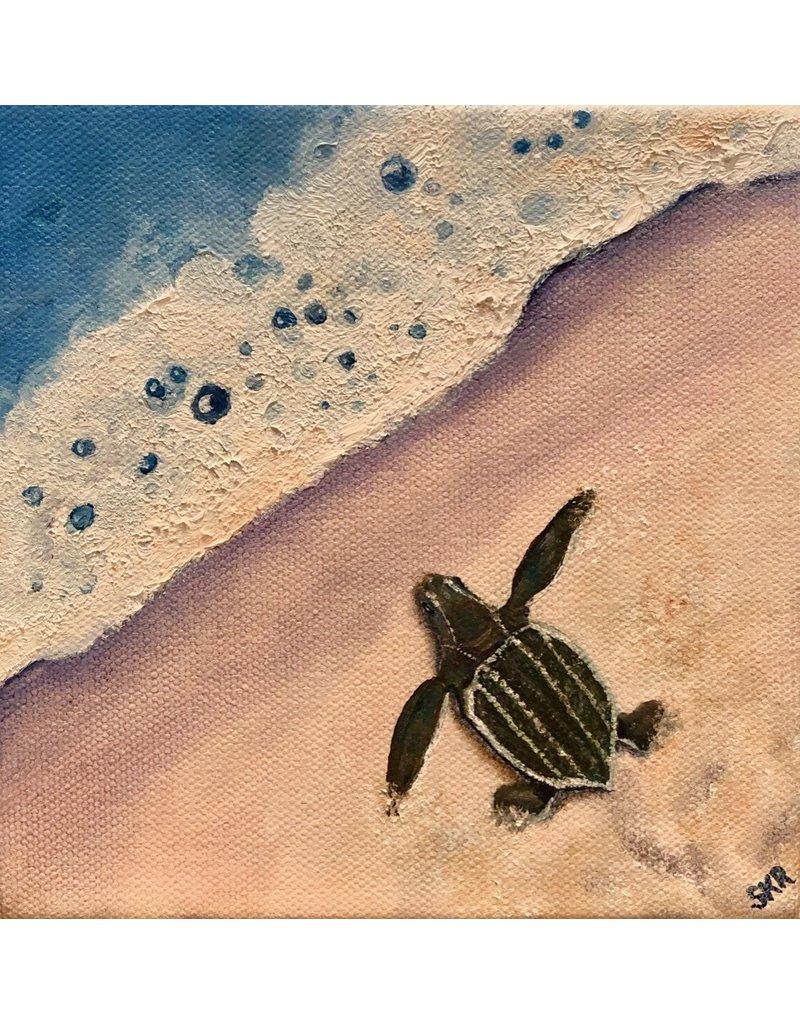 Susan Roberts Leatherback Mornings (Original Oil, Gallery Wrap, 6x6)