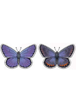 Jabebo Earrings BUTTERFLY (KARNER BLUE, JABEBO)