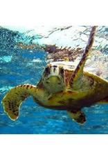 Zen Art & Design Sea Turtle 1 (Small, 125 Pieces, Artisanal Wooden Jigsaw Puzzle)