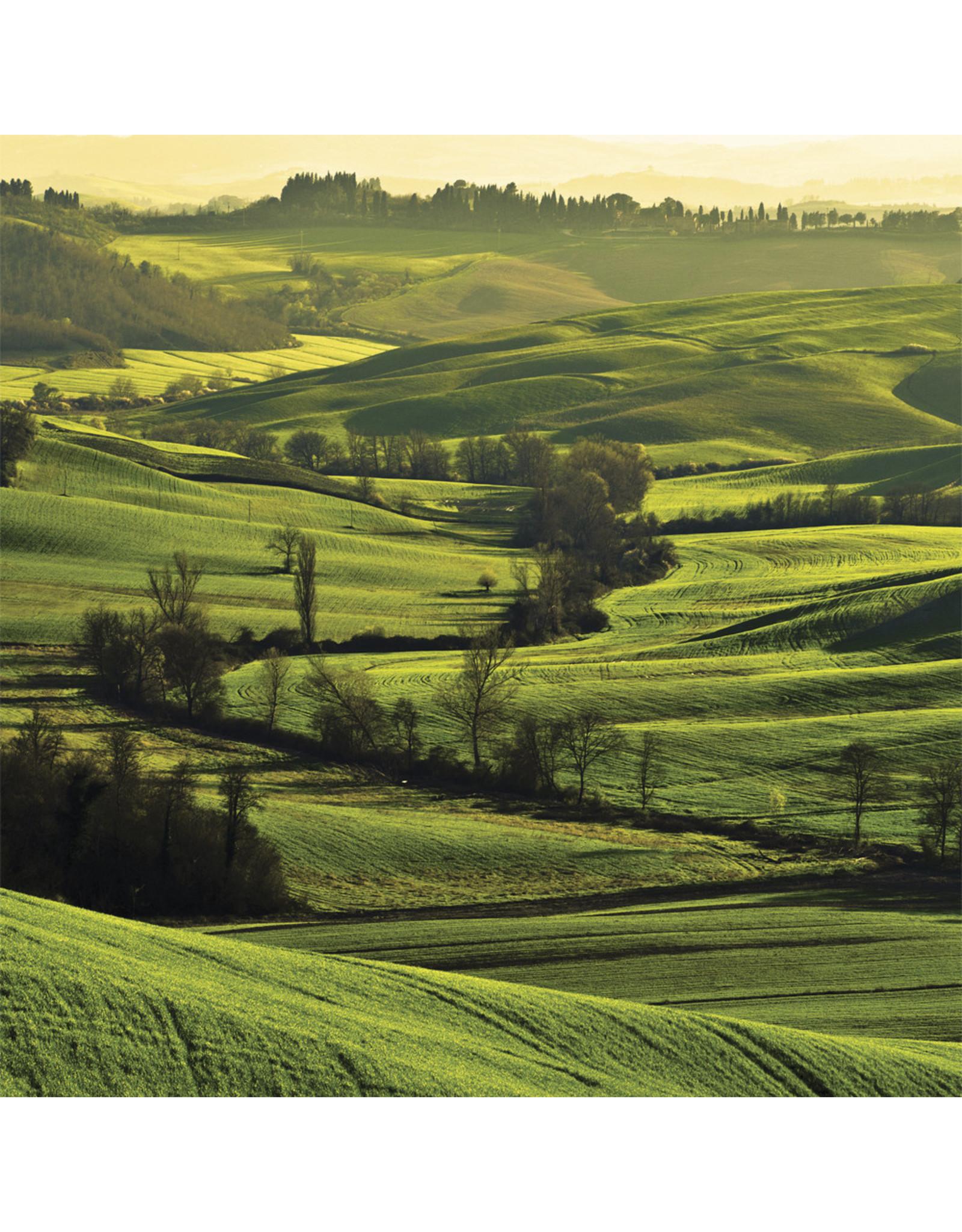 Zen Art & Design Tuscan Dawn (Teaser, 50 Pieces, Artisanal Wooden Jigsaw Puzzle)