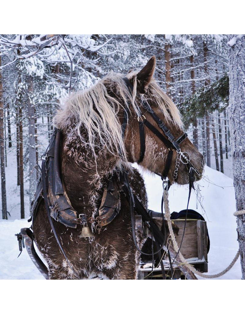Zen Art & Design Winter Horse (Teaser, 50 Pieces, Artisanal Wooden Jigsaw Puzzle)
