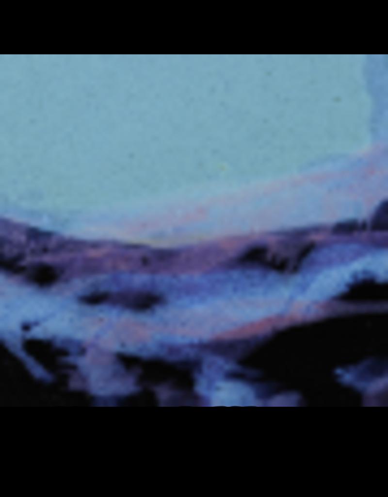 Always Azul WILD HORSES MUG (Panoramic Image, Lg, 14oz)