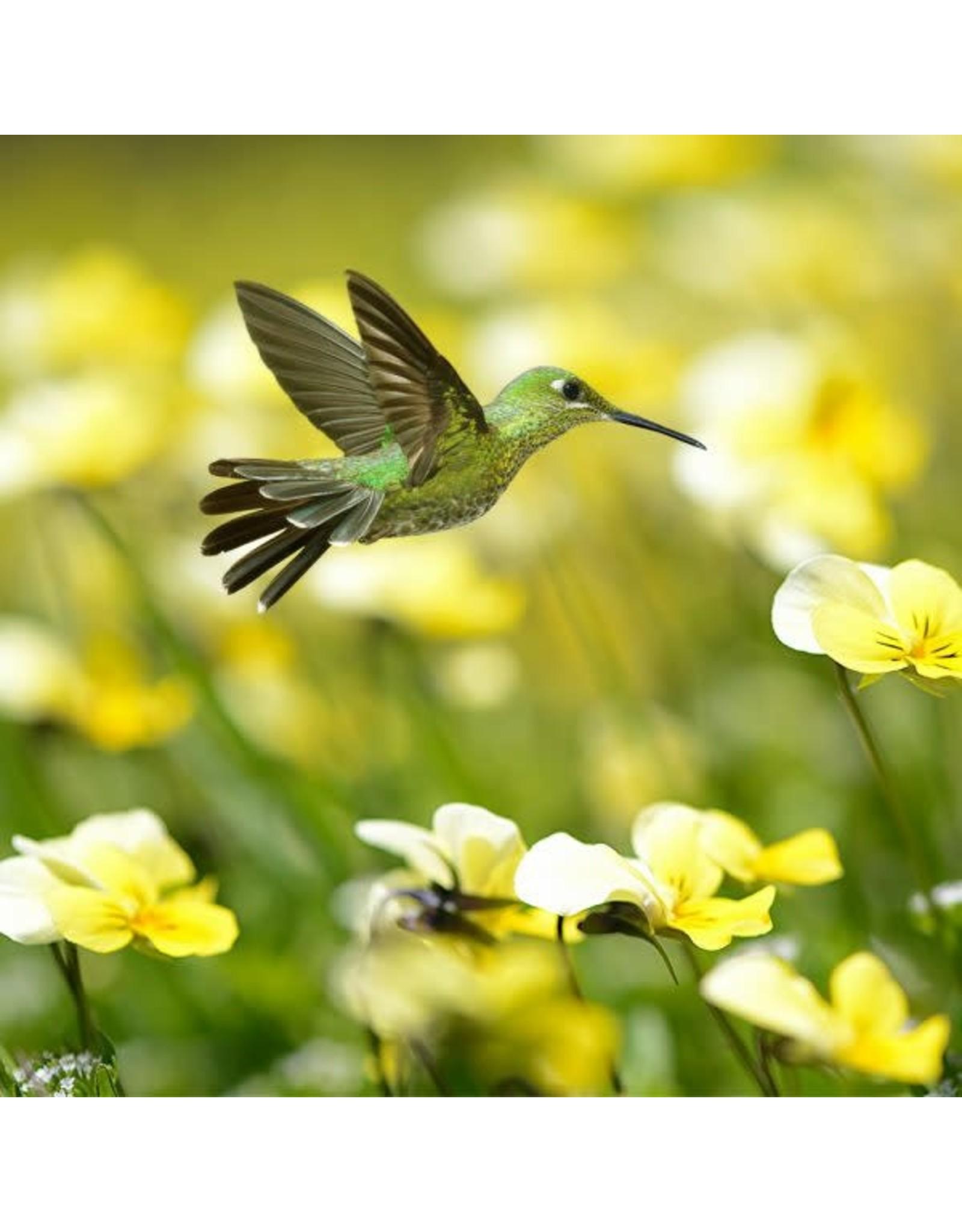 Zen Art & Design Summer Hummingbird (Teaser, 50 Pieces, Artisanal Wooden Jigsaw Puzzle)