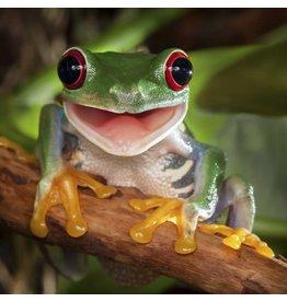 Zen Art & Design Happy Tree Frog (Sm, 126 Pieces, Artisanal Wooden Jigsaw Puzzle)