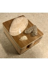 Don Snyder Jewelry Box w/Shells (Wood, 1 DWR, ASST, DONS)