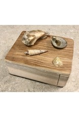 Don Snyder Jewelry Box w/Shells (Wood, 1 DWR, ASST)