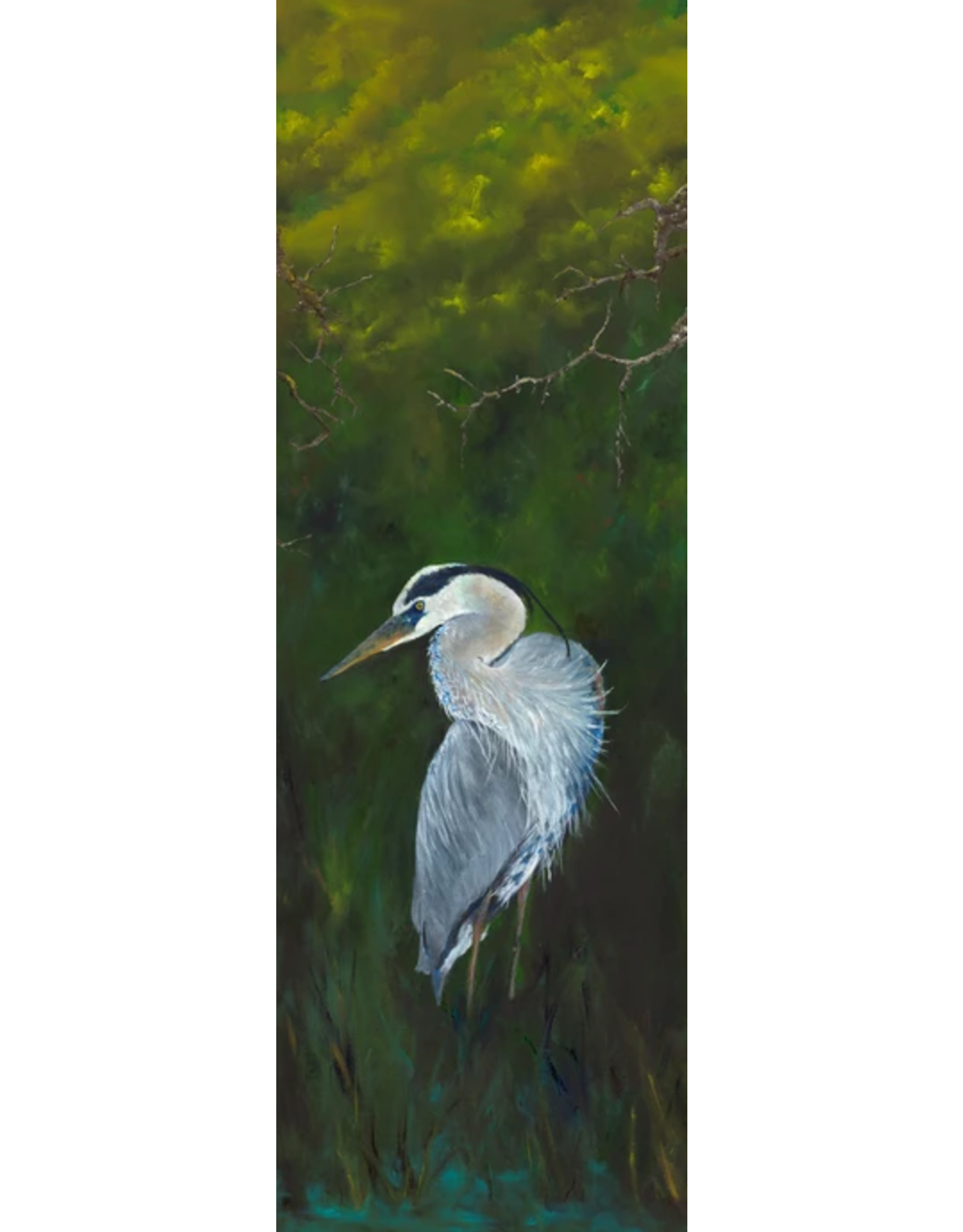 "Guy LeFebvre Great Blue Heron 5 (Giclee on Aluminum, 8x20"")"
