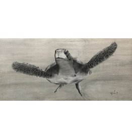"Molly Pearce Sea Turtle Gray (8x11"" MOLP)"