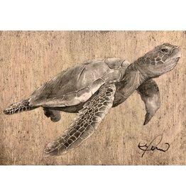 "Molly Pearce Loggerhead Turtle (8x11"" MOLP)"