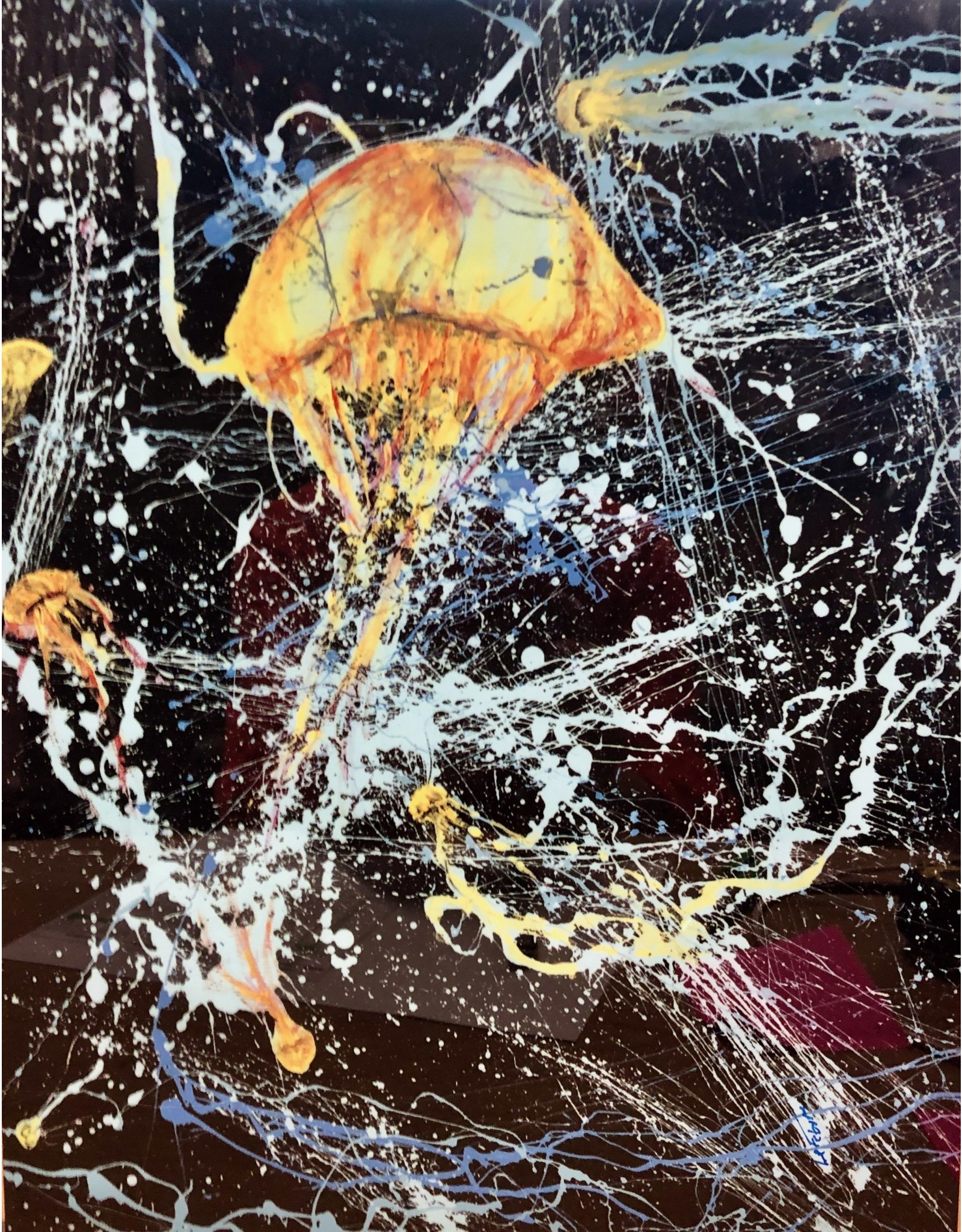 "Guy LeFebvre Jellies (Giclee on Aluminum, 16x20"" GUYL))"
