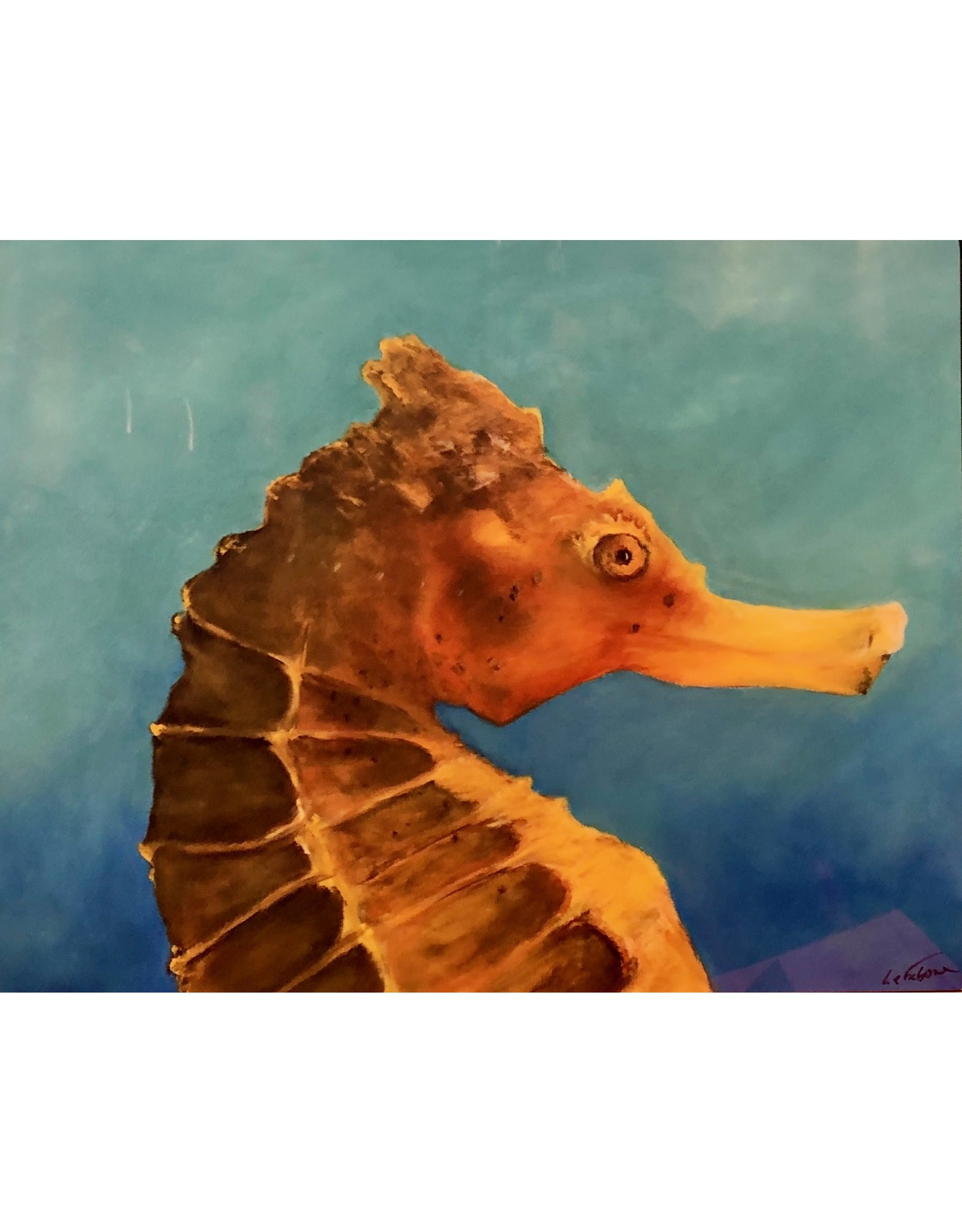 "Guy LeFebvre Portrait of a Seahorse (giclee on metal 8x10"" GUYL)"