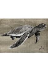"Molly Pearce Loggerhead Turtle (gray) 14x24"""" MOLP)"
