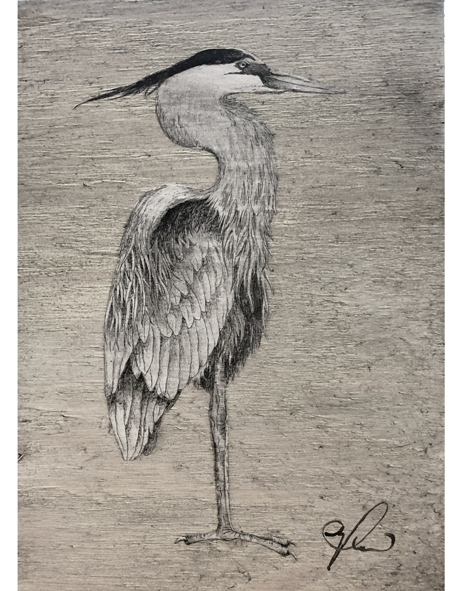 "Molly Pearce Blue Heron (8x11"" MOLP)"