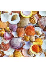 Zen Art & Design Seashells (Teaser, 50 Pieces, ZEN Wooden Jigsaw Puzzle)