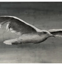 """Molly Pearce Seagull (Mixed media 8x11"""" MOLP)"""