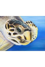 Susan Roberts GREEN TURTLE 1 (Giclee, Ltd. Ed, Gallery Wrap, 8x10, SUSR)