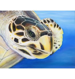 Susan Roberts GREEN TURTLE 1 (Giclee, Ltd. Ed, Gallery Wrap, 8x10, SUSR)