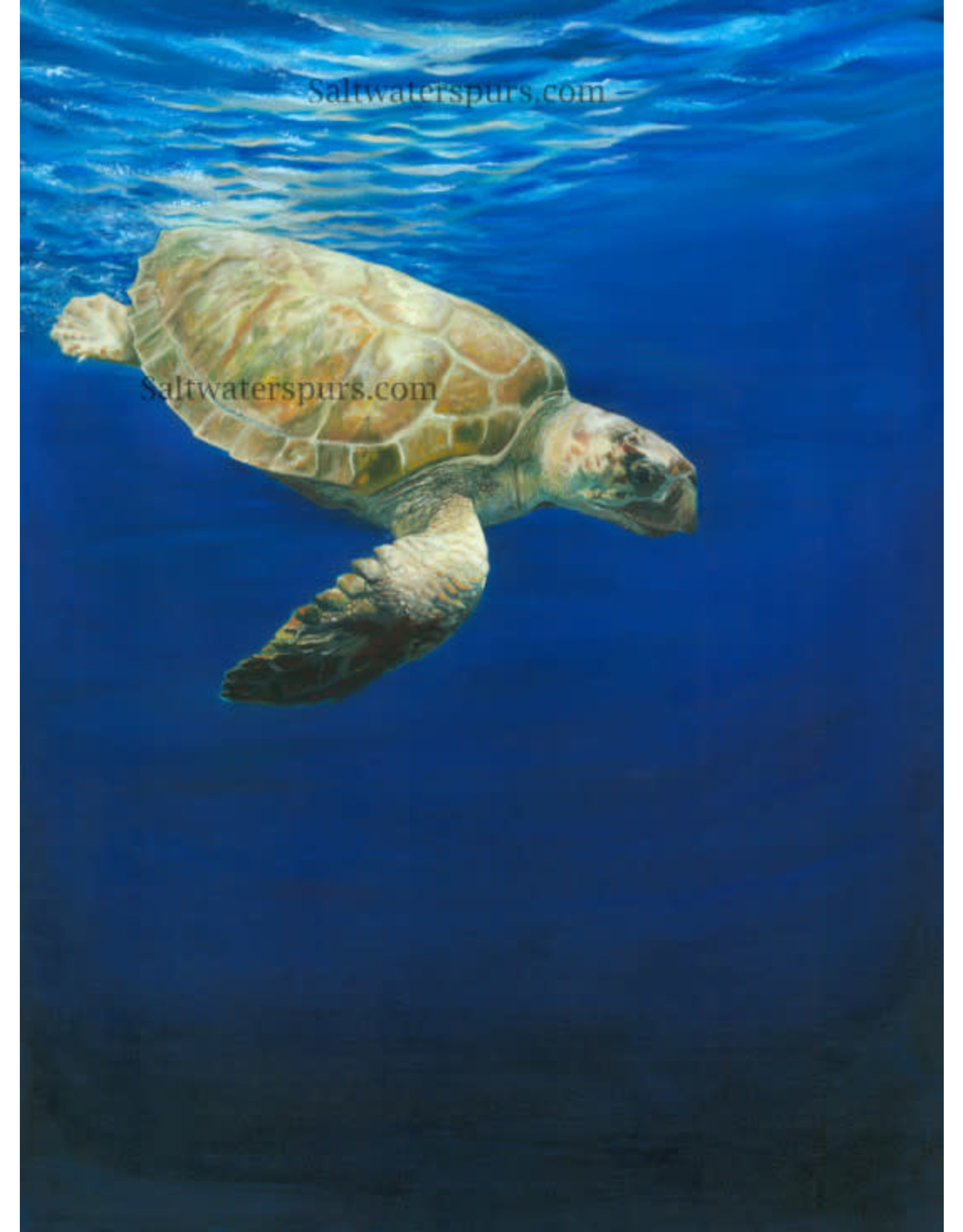 "Susan Roberts GOING DOWN (Giclee, Ltd. Ed, Gallery Wrap, 11x14"", SUSR)"