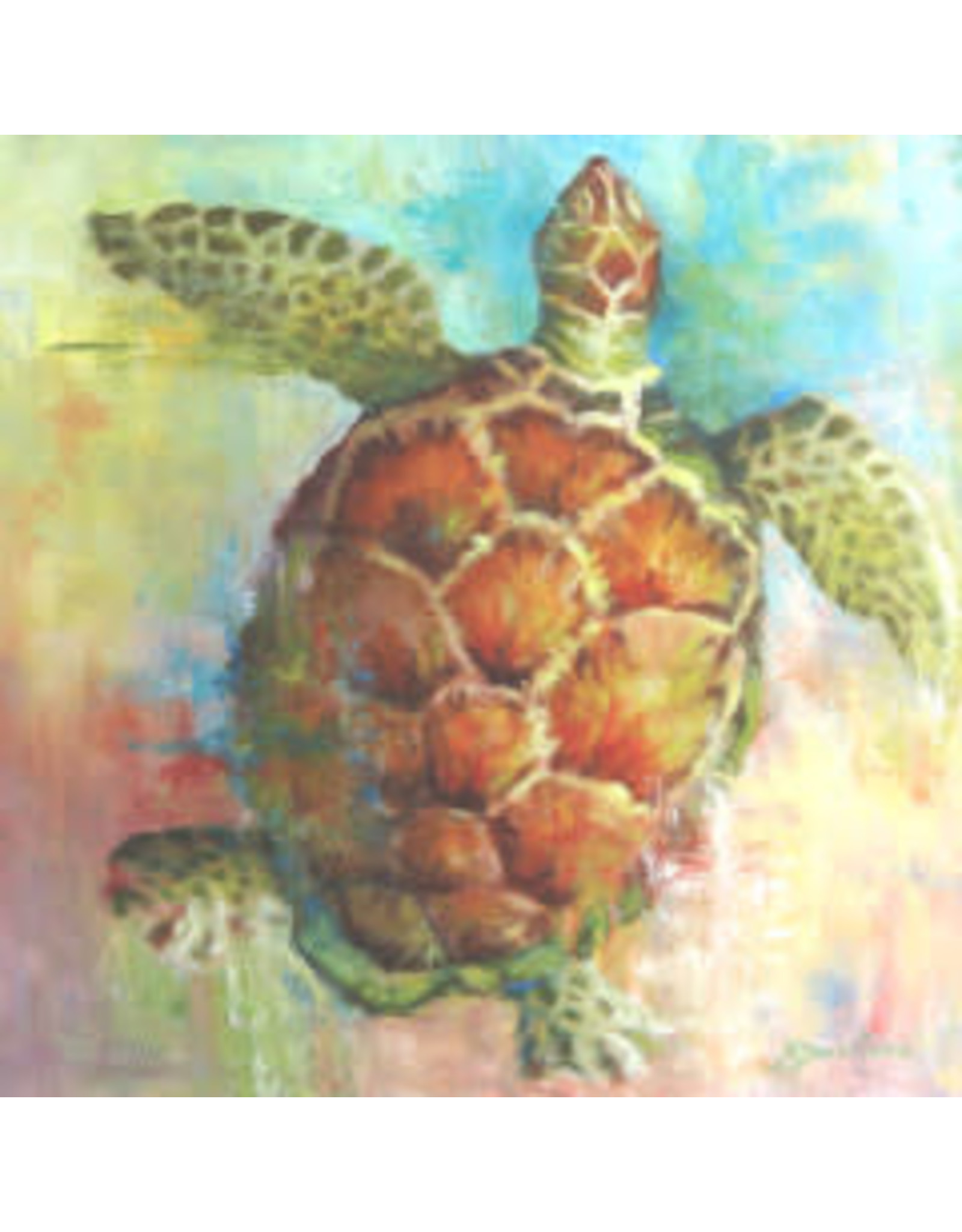 "Michaelann Bellerjeau CARIBBEAN CALICO, turtle, original oil on GW canvas, 20x20"", MICB"