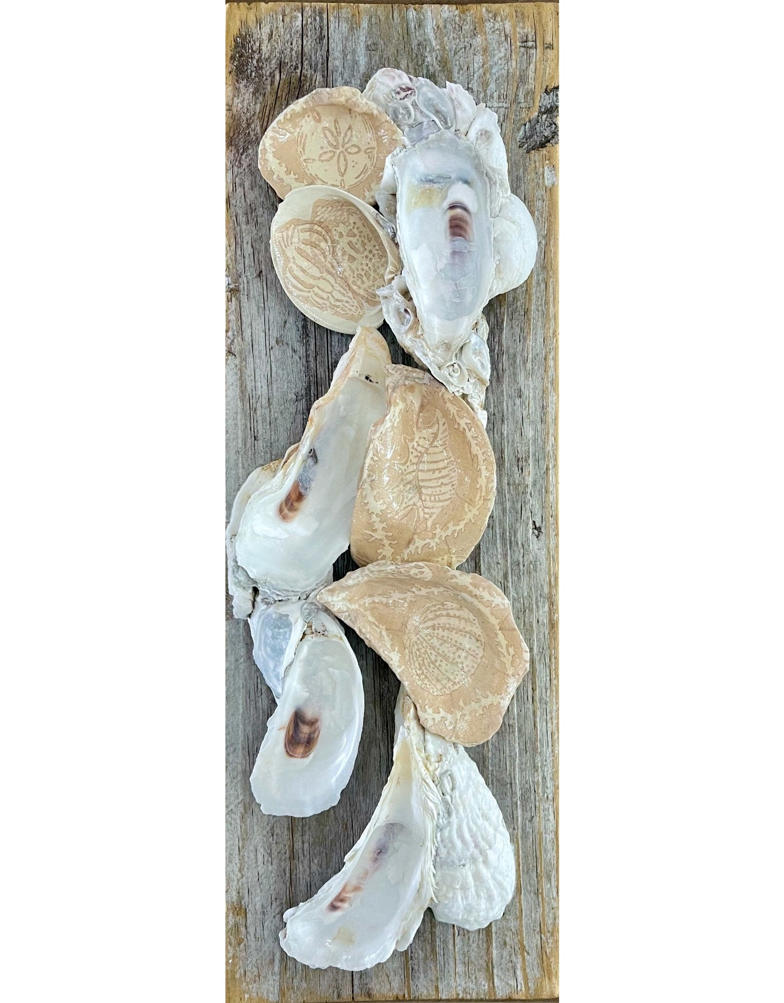 """Pam Maschal SOUTHERN WILD OYSTER CLUSTERS  on panel,16x6"""", PAMM"""