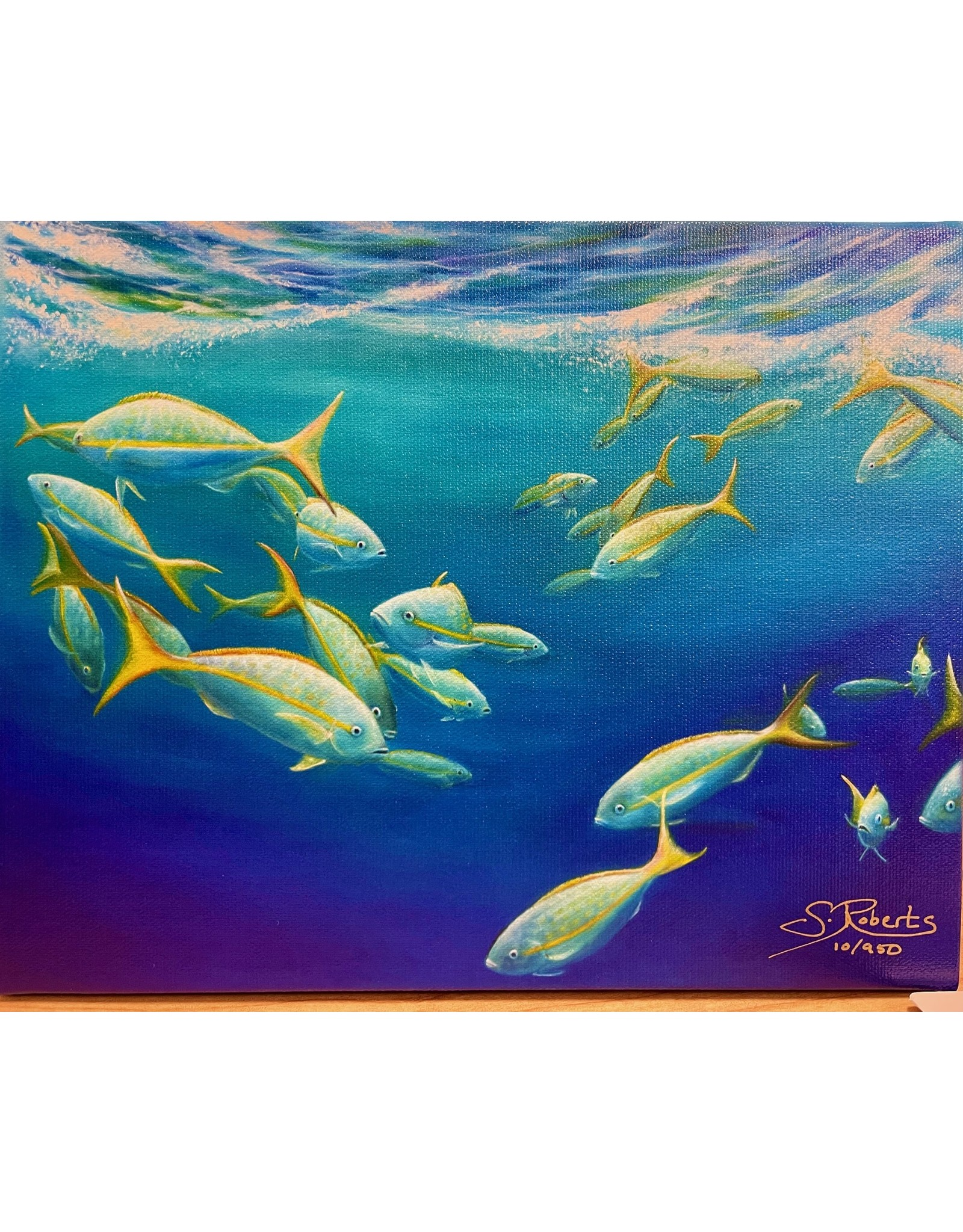 """Susan Roberts YELLOW TAIL II, giclee on GW canvas, 8x10"""", SUSR"""