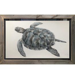 "Molly Pearce Hawksbill Turtle, mixed media on panel, unframed, 24x17"",MOLP"