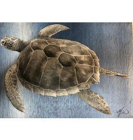 "Molly Pearce Hawksbill Turtle, mixed media on panel, unframed, 11x8"",MOLP"