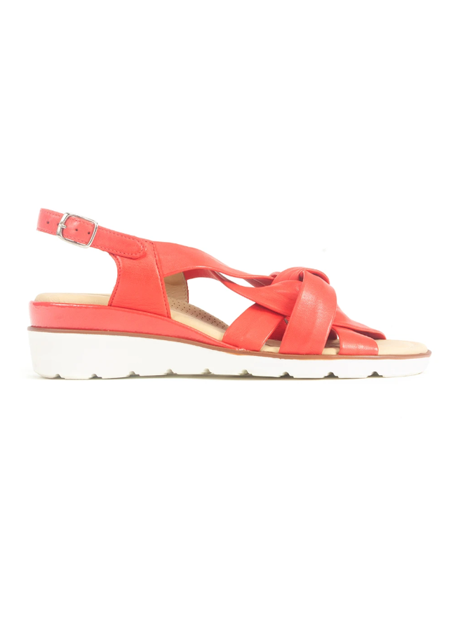 Wedge Multi strapped sandal LUCILLA 50076