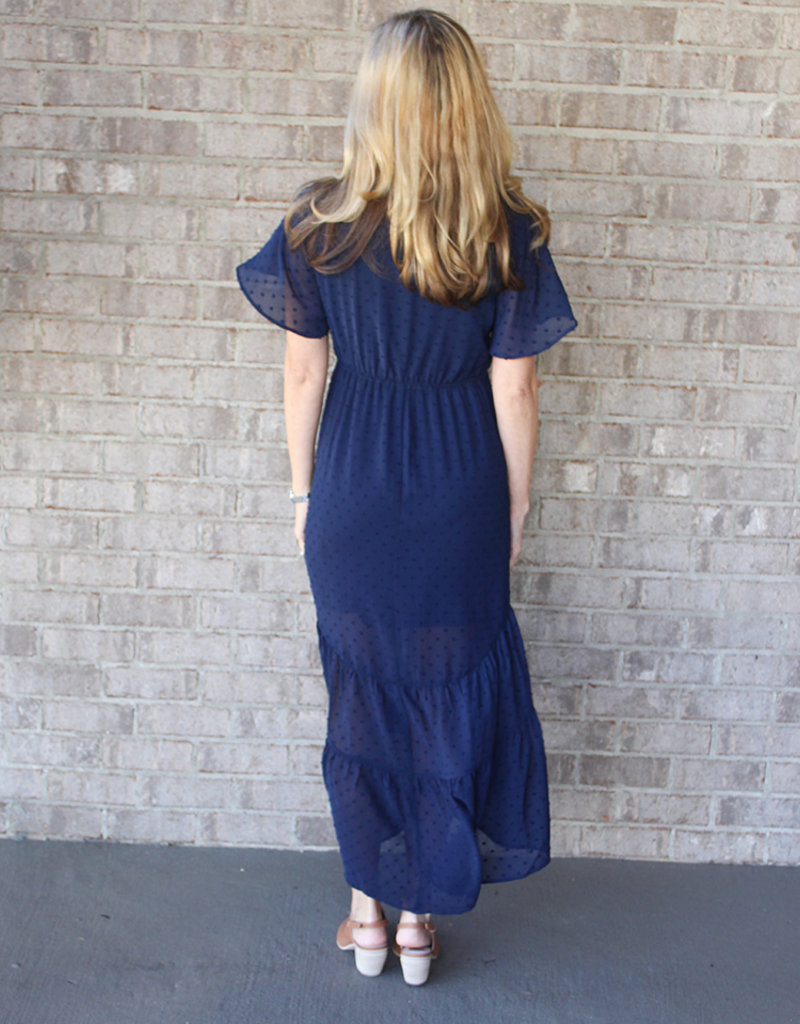 Rami Swiss Dot Dress