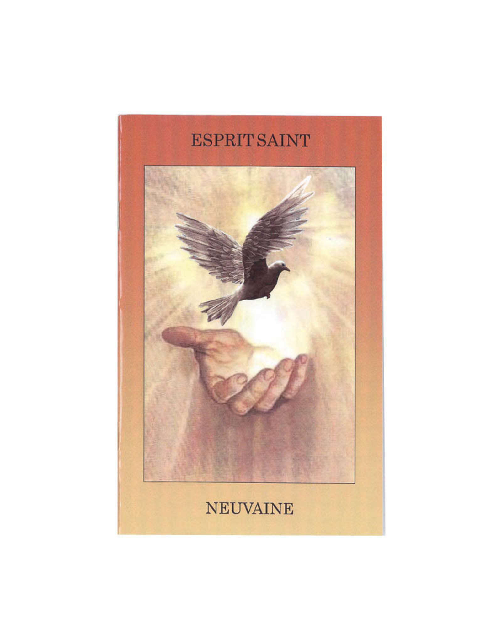 Neuvaine à l'Esprit Saint (french)