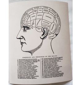 Curious Prints Vintage Anatomy Phrenology Chart White Print - 8X10