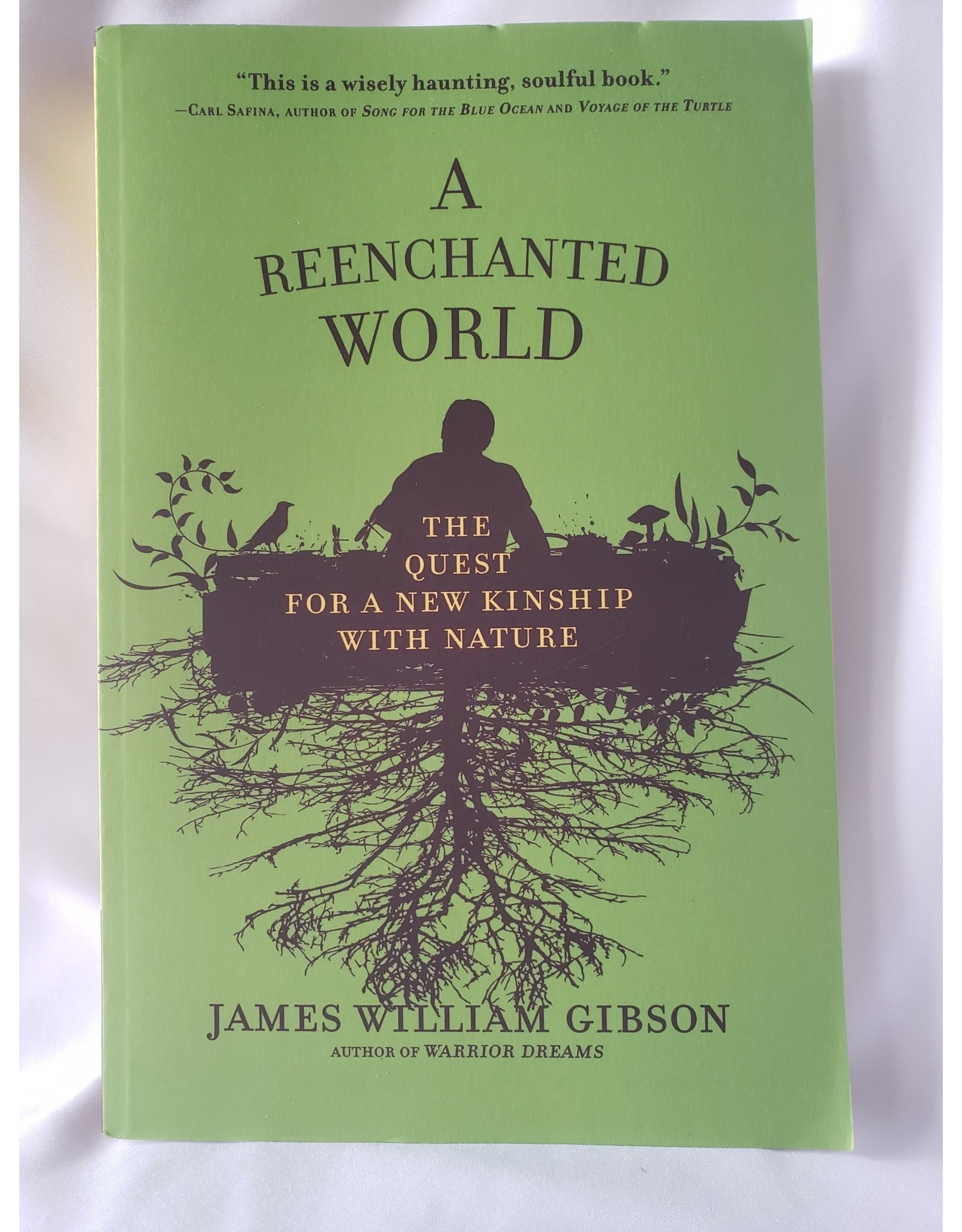 The Reenchanted World