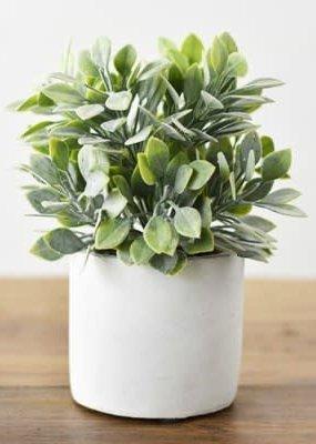 Pd Home & Garden Green Bush with White Pot