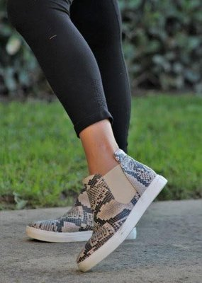 Mata Shoes Coffee and Snakeskin Sneaker