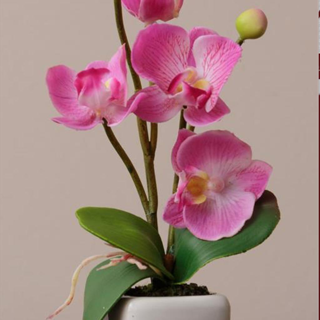 Audrey's Mini Pink & White Floral Pot
