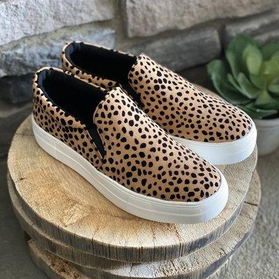 Soda Soda Leopard Slip Ons (6-10)