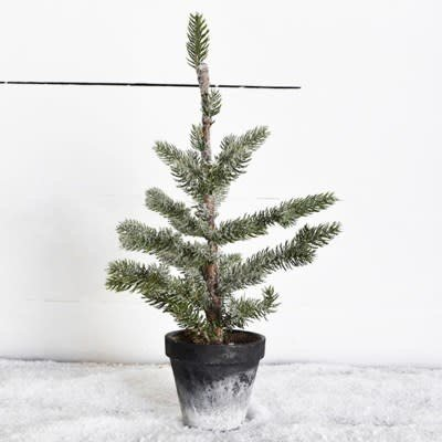 "Pd Home & Garden 16"" Tree in Charcoal Pot"