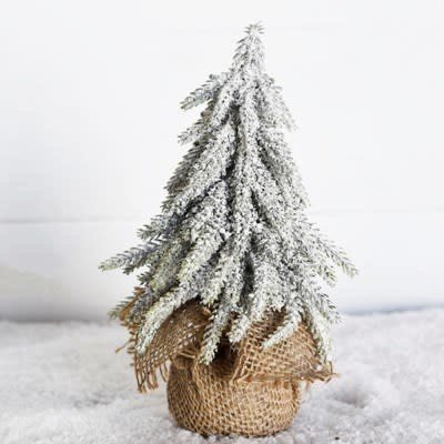 "Pd Home & Garden 8"" Frosted Tree in Burlap"