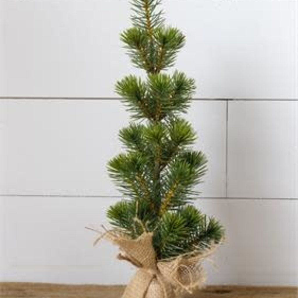 "Audrey's 16.5"" Pine Tree in Burlap Sack"