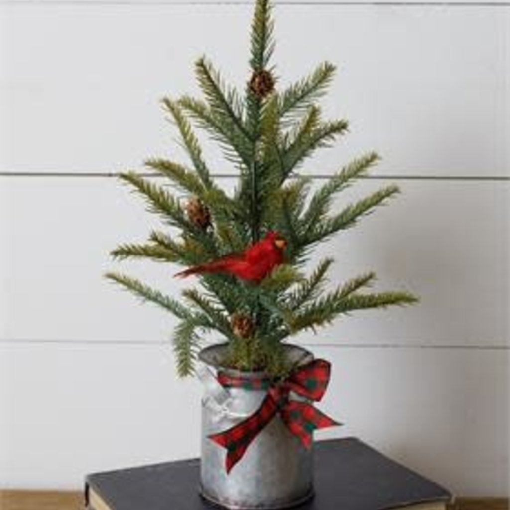 Audrey's Evergreen Tree in Milk Can with Cardinal