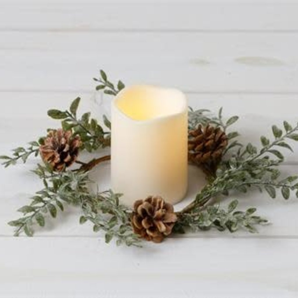 Audrey's Frosted Cone Boxwood Candle Ring