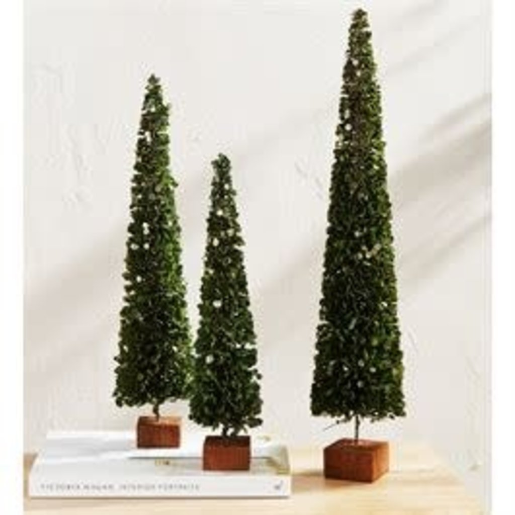 MUDPIE Mud Pie Faux Boxwood Trees - Gold Accent