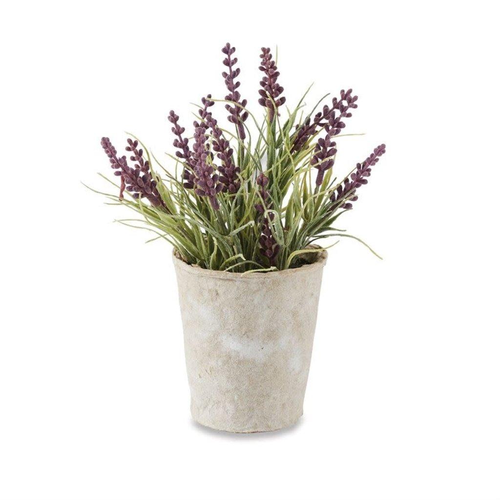 Mud Pie Lavender Pot Set of 6 Centerpiece
