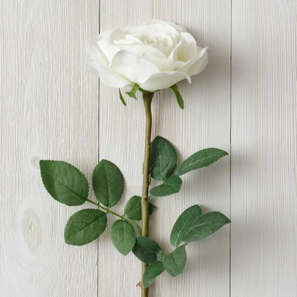 Audrey's White Rose Branch