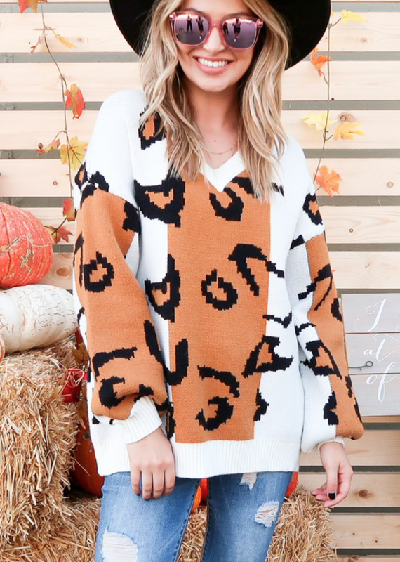 And the Why Leopard Color Block Sweater (S-3XL)